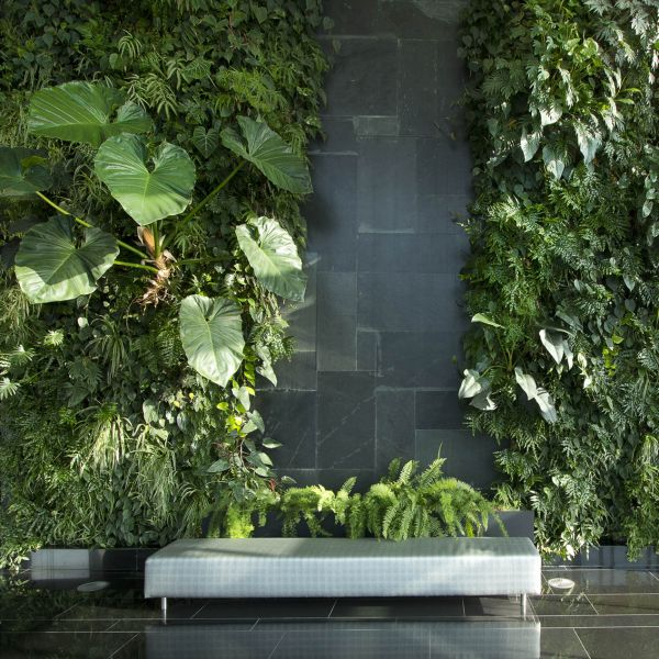 Products_Vertical-Garden.jpg